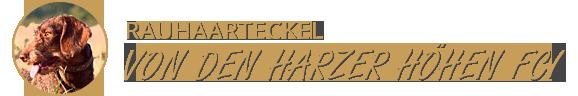 Rauhaardackel von den Harzer Höhen FCI
